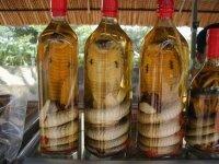 Россияне теперь отказываются от крепких спиртных напитков