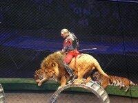Цирковое шоу Легенда Запашных состоялось
