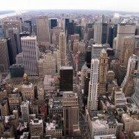 За этот год в Нью-Йорке было совершенно 496 убийств
