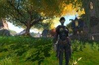 В Kingdoms of Amalur: Reckoning появится новая раса