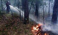 Сильные  неутихающие пожары на Дальнем Востоке