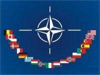 НАТО не будет применять силу против Сирии