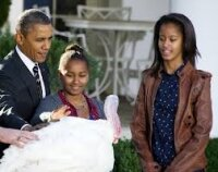 Обама помиловал индеек