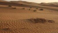 Изменение климата может угрожать арабскому миру  голодом
