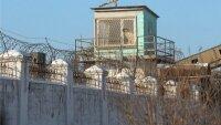 Главная новогодняя елка Киргизии рухнула из-за ветра