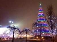 Украинская елка - одна из лучших в мире