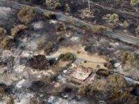 Тасмания в плену самых масштабных за 80 лет пожаров