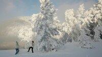 В центр России идут морозы