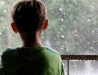 МИД России рассказал подробности «похищения» детей у Карелиной