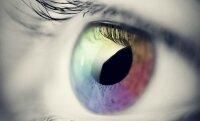 Была создана сетчатка глаза из полимера