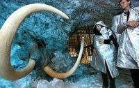 Ученые готовы воскресить мамонта