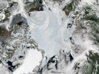 Разграничение арктических экономических зон является международной проблемой