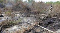 Разбившийся самолет с наркотиками найден в Перу